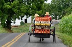 Amish chicken hauler