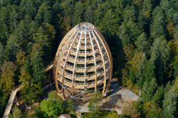 Bavarian forest treetop walk 537x357