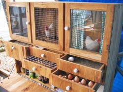 Chicken coop drawers