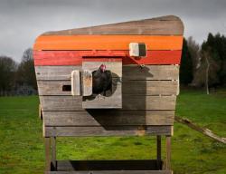 John wright chicken coop modern sustainable 4